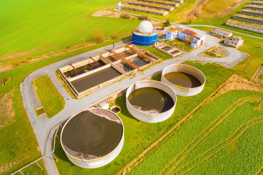 Treatment and conditioning of biogas